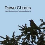 dawn-chorus