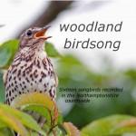 woodland-birdsong